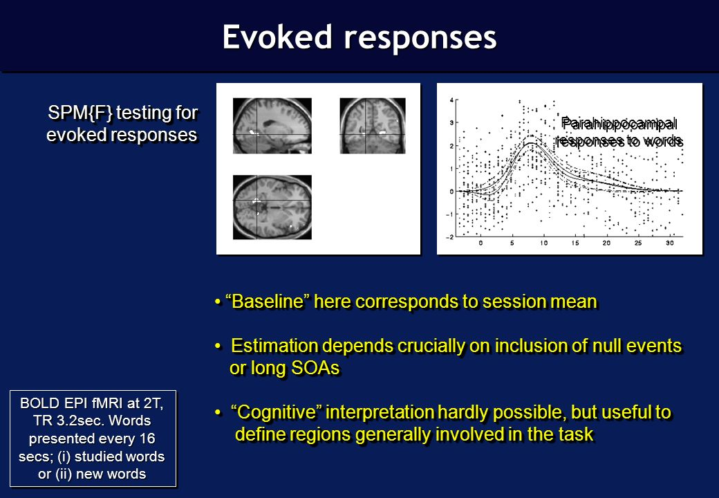 Differential event-related fMRI Parahippocampal responses to words BOLD EPI fMRI at 2T, TR 3.2sec.