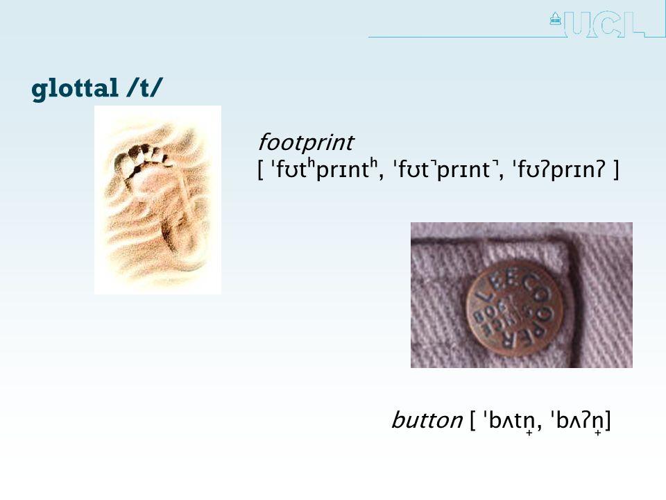 glottal /t/ button [ ˈbʌtn̟, ˈbʌʔn̟] footprint [ ˈfʊtʰprɪntʰ, ˈfʊt ̚prɪnt ̚, ˈfʊʔprɪnʔ ]
