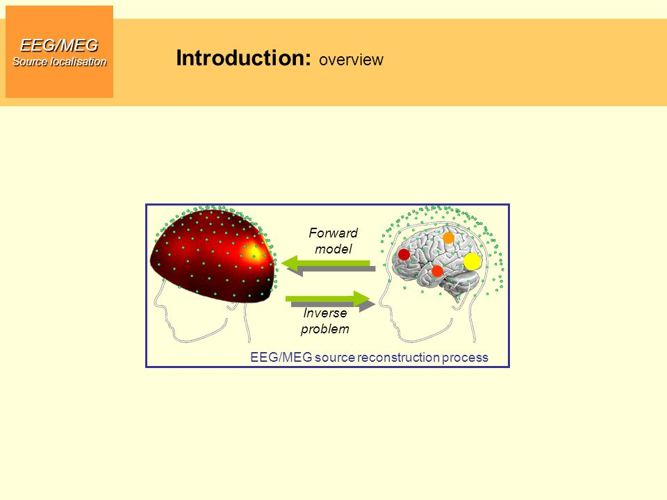 EEG/MEG Source localisation EEG/MEG source reconstruction process Forward model Inverse problem Introduction: overview