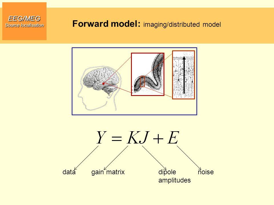 EEG/MEG Source localisation Forward model: imaging/distributed model datadipole amplitudes noisegain matrix