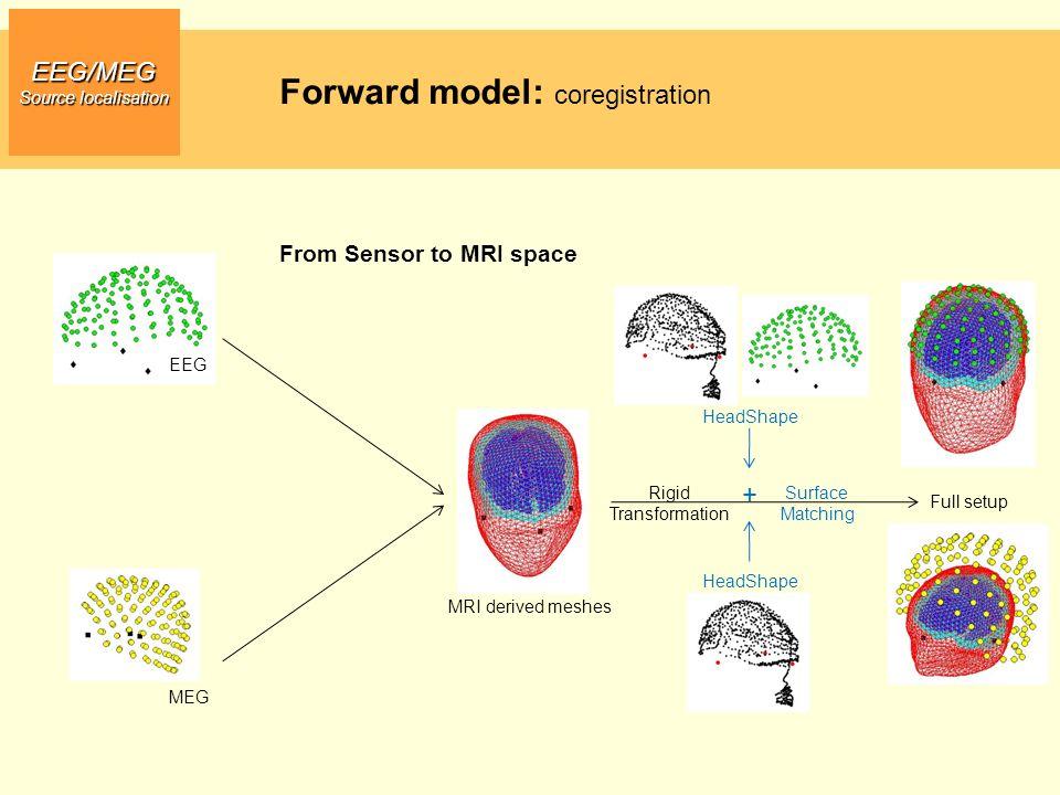 EEG/MEG Source localisation From Sensor to MRI space MRI derived meshes MEG Full setup EEG Rigid Transformation HeadShape Surface Matching + HeadShape