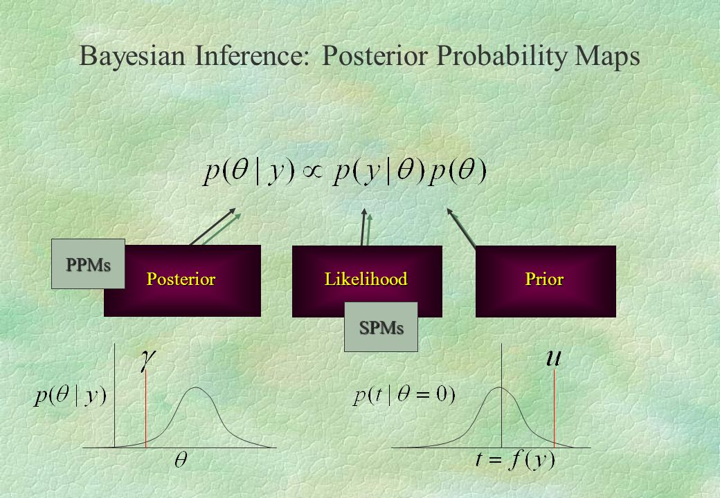LikelihoodPrior Posterior SPMs PPMs Bayesian Inference: Posterior Probability Maps