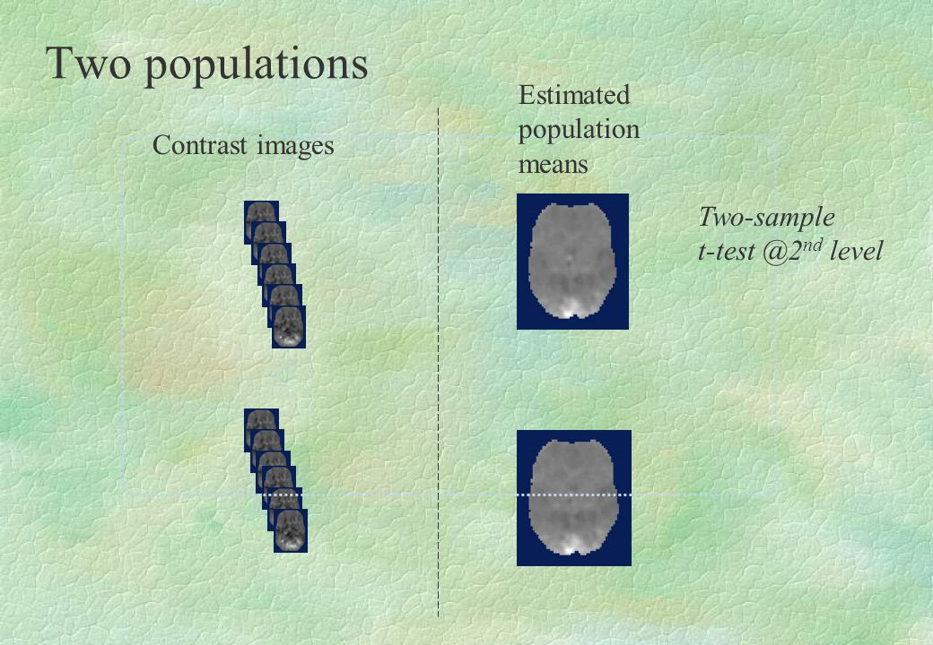 Two populations Contrast images Estimated population means Two-sample t-test @2 nd level