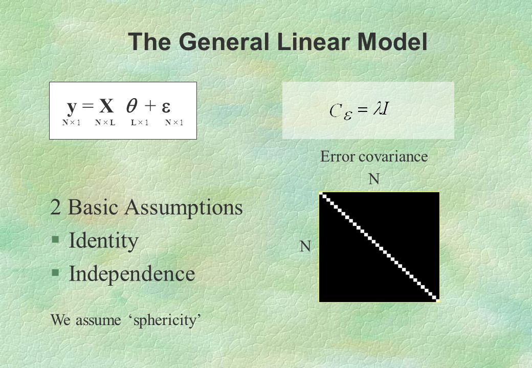 y = X + N 1 N L L 1 N 1 2 Basic Assumptions §Identity §Independence The General Linear Model N N Error covariance We assume sphericity