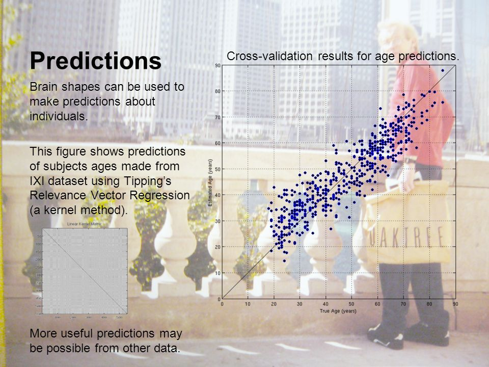 Predictions Brain shapes can be used to make predictions about individuals.