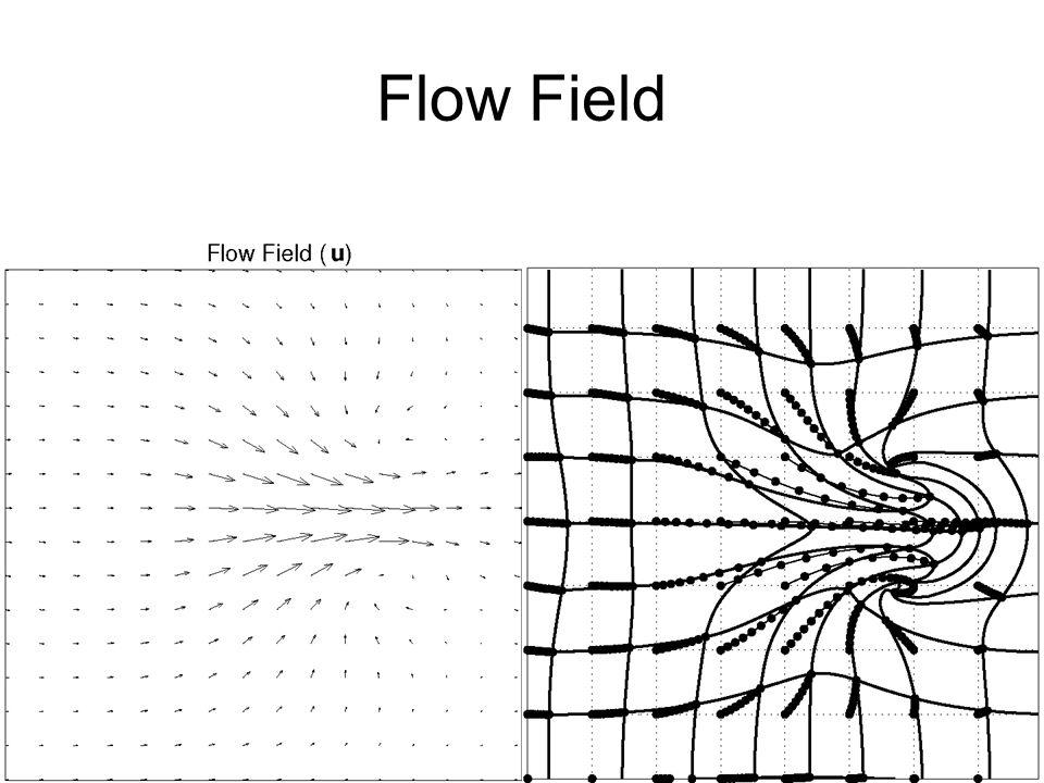 Flow Field