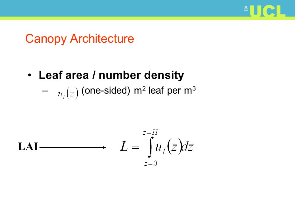 Canopy Architecture Leaf area / number density – (one-sided) m 2 leaf per m 3 LAI