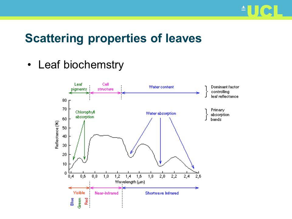 Scattering properties of leaves Leaf biochemstry