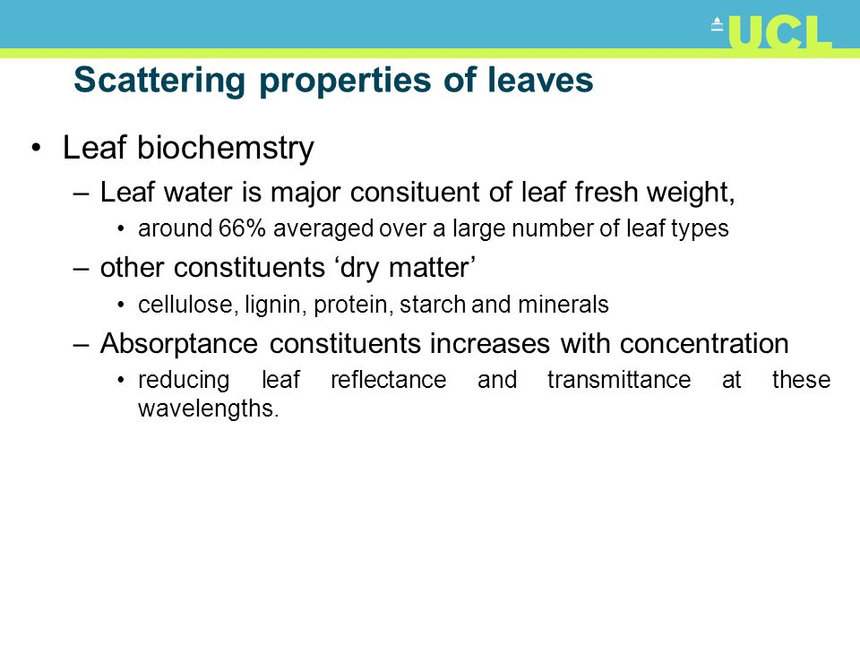 Scattering properties of leaves Leaf biochemstry –Leaf water is major consituent of leaf fresh weight, around 66% averaged over a large number of leaf