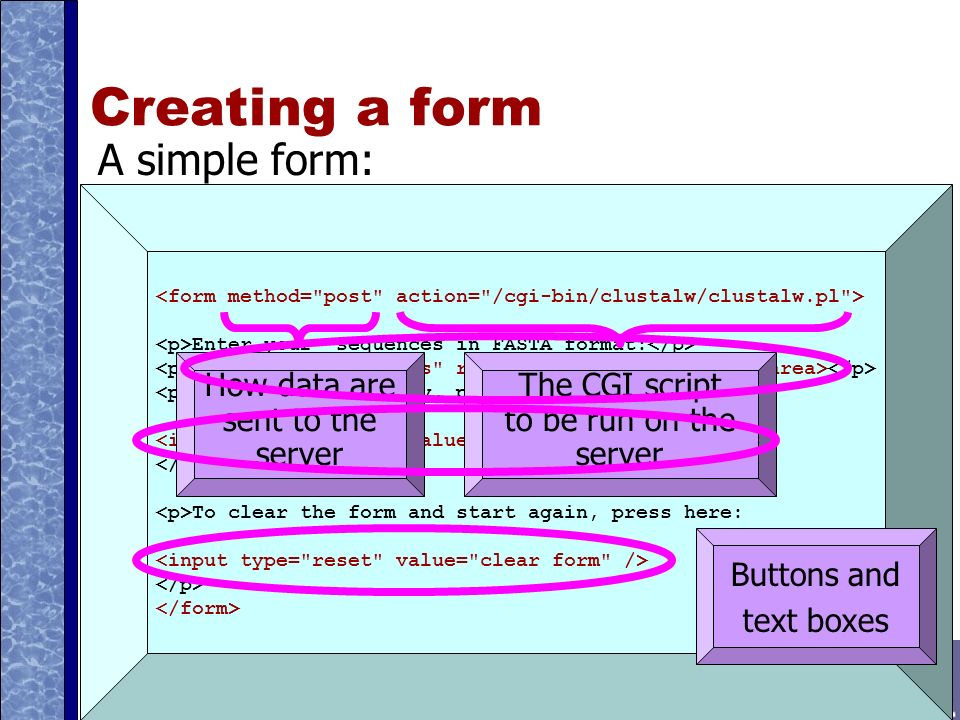 Creating a form A simple form: Enter your sequences in FASTA format: To submit your query, press here: To clear the form and start again, press here: How data are sent to the server The CGI script to be run on the server Buttons and text boxes