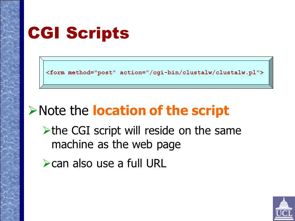 CGI Scripts Note the location of the script the CGI script will reside on the same machine as the web page can also use a full URL