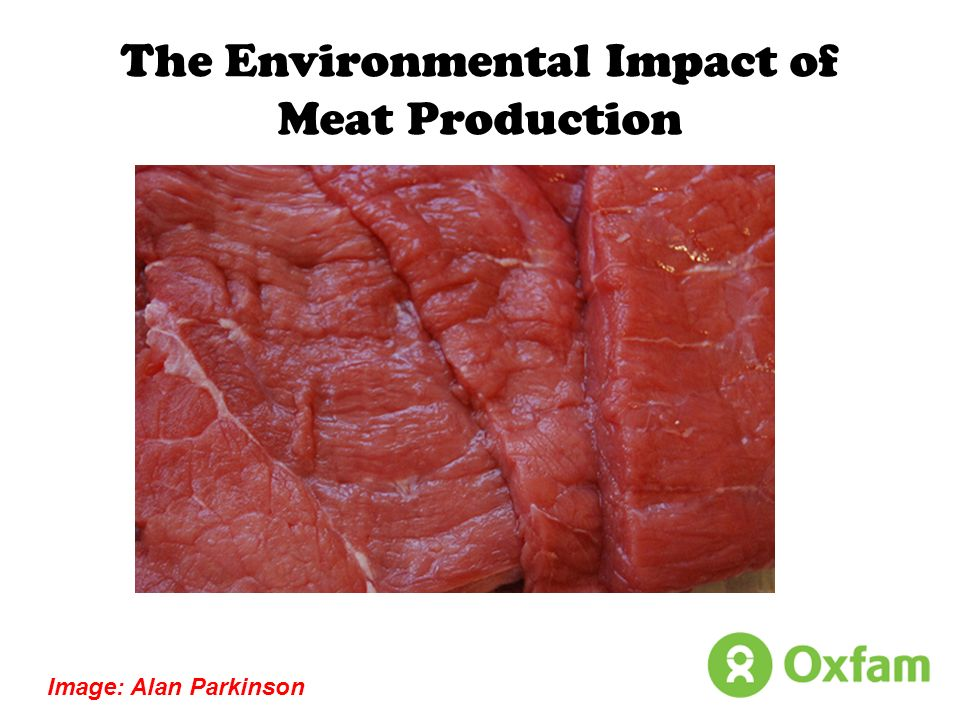 The Environmental Impact of Meat Production Image: Alan Parkinson