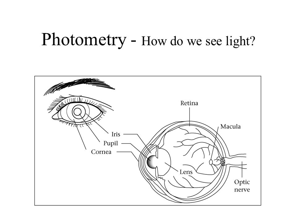 Photometry - How do we see light?