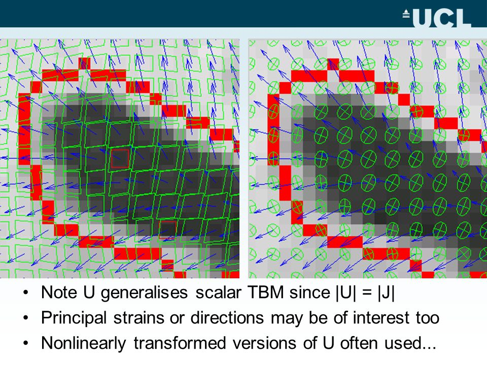 Note U generalises scalar TBM since |U| = |J| Principal strains or directions may be of interest too Nonlinearly transformed versions of U often used.