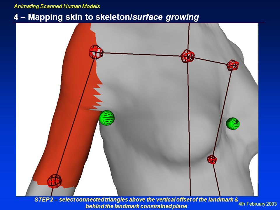 4th February 2003 Animating Scanned Human Models 4 – Mapping skin to skeleton/surface growing STEP 2 – select connected triangles above the vertical offset of the landmark & behind the landmark constrained plane