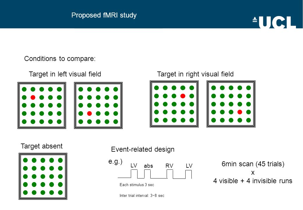 Proposed fMRI study Conditions to compare: Target in left visual fieldTarget in right visual field Target absent Event-related design Each stimulus 3