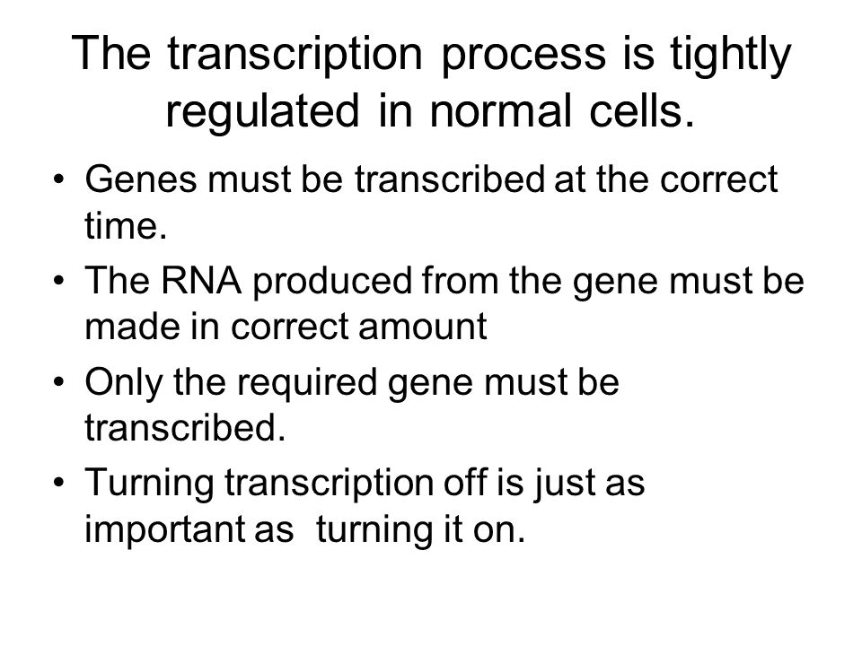 The transcription process is tightly regulated in normal cells. Genes must be transcribed at the correct time. The RNA produced from the gene must be