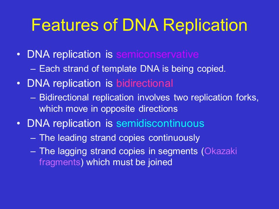 Features of DNA Replication DNA replication is semiconservative –Each strand of template DNA is being copied. DNA replication is bidirectional –Bidire