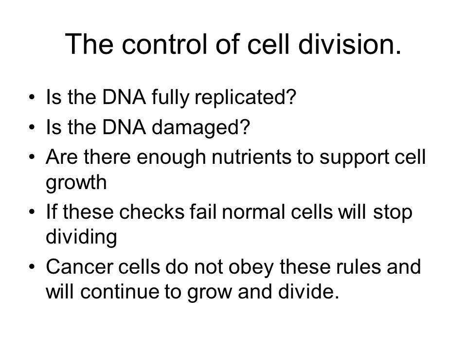 The control of cell division. Is the DNA fully replicated? Is the DNA damaged? Are there enough nutrients to support cell growth If these checks fail