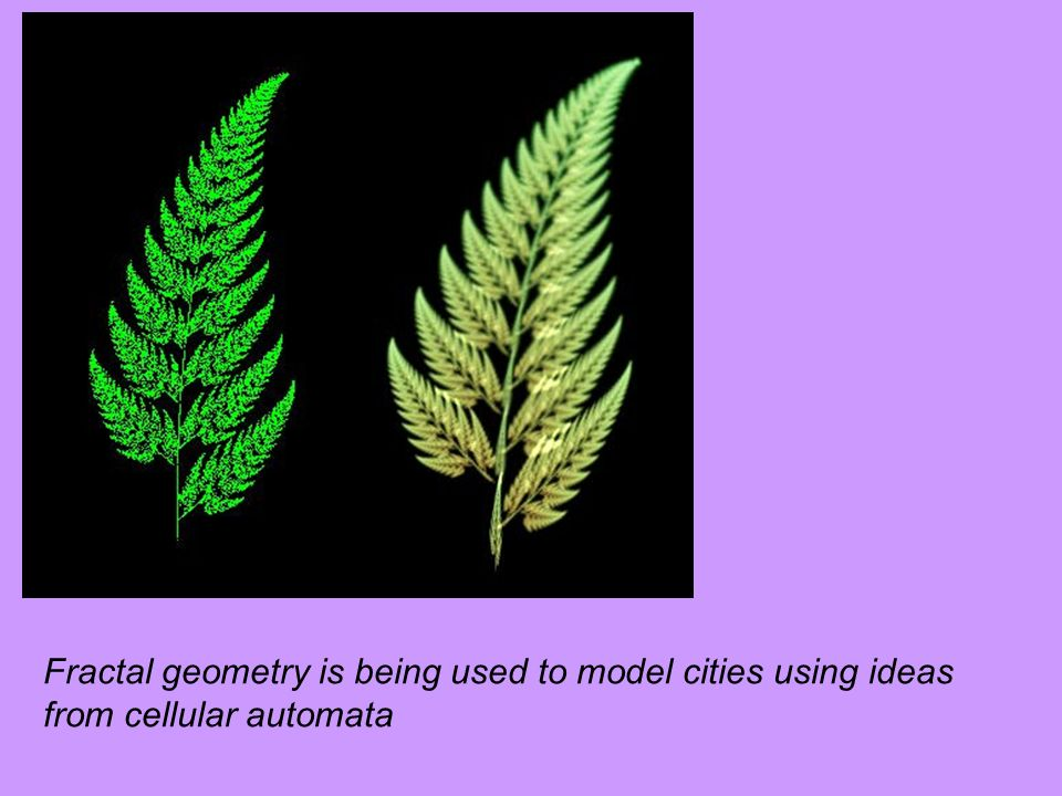 Fractal geometry is being used to model cities using ideas from cellular automata