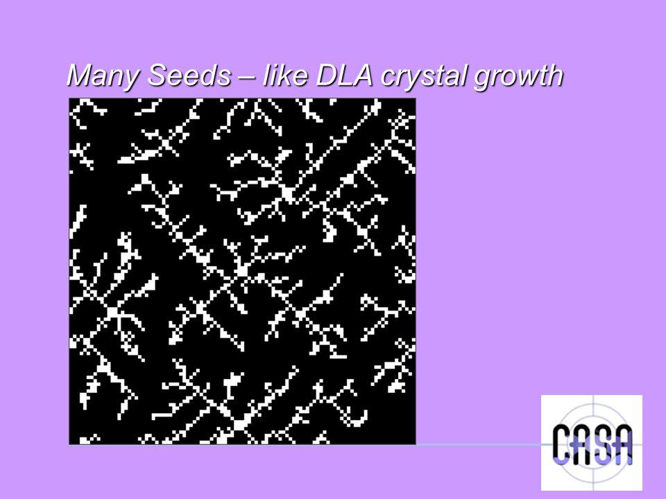 Many Seeds – like DLA crystal growth