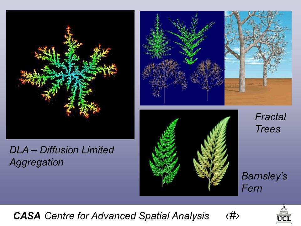 CASA Centre for Advanced Spatial Analysis 18 Barnsleys Fern DLA – Diffusion Limited Aggregation Fractal Trees