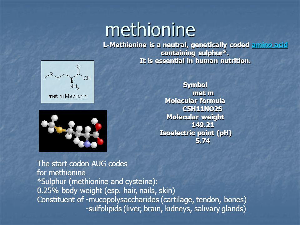 methionine L-Methionine is a neutral, genetically coded amino acid amino acidamino acid containing sulphur*. It is essential in human nutrition. Symbo