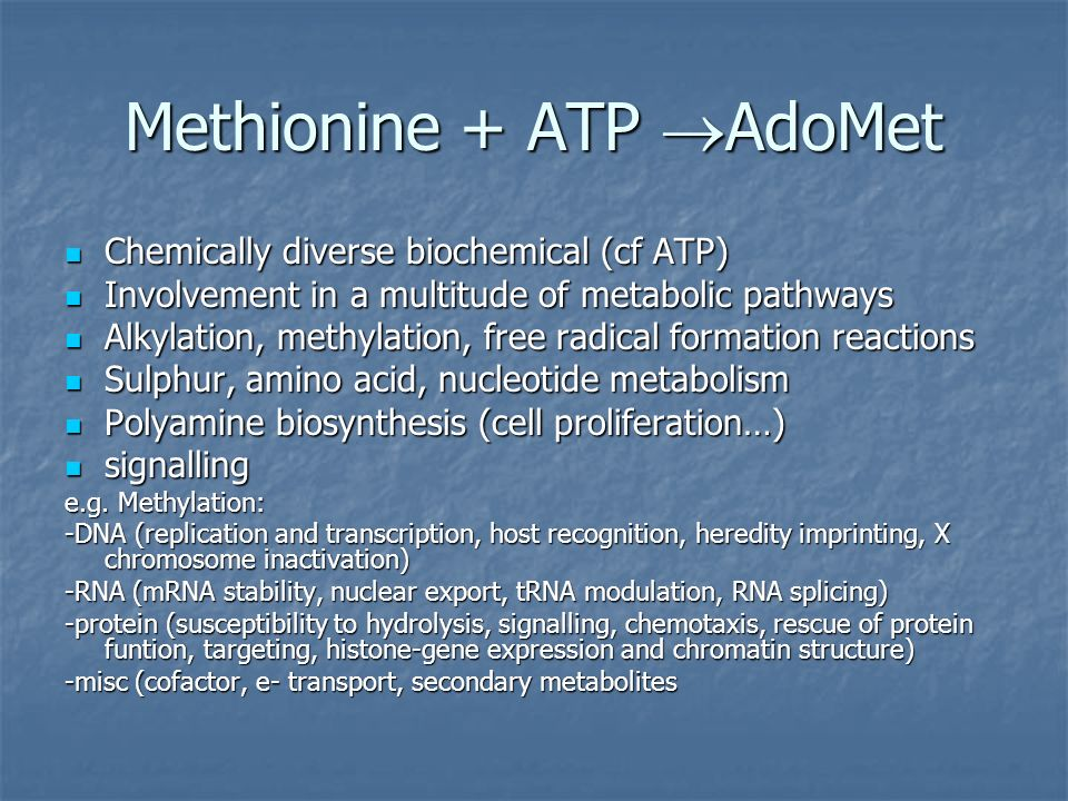 Methionine + ATP AdoMet Chemically diverse biochemical (cf ATP) Chemically diverse biochemical (cf ATP) Involvement in a multitude of metabolic pathwa