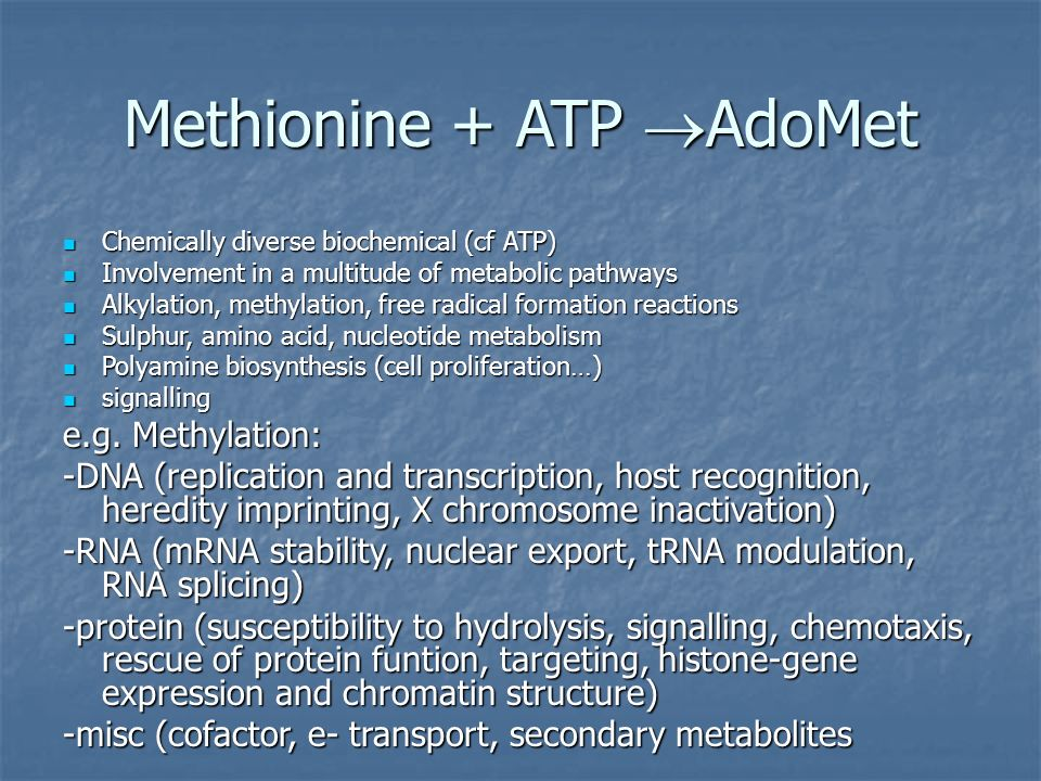 Methionine + ATP AdoMet Chemically diverse biochemical (cf ATP) Chemically diverse biochemical (cf ATP) Involvement in a multitude of metabolic pathways Involvement in a multitude of metabolic pathways Alkylation, methylation, free radical formation reactions Alkylation, methylation, free radical formation reactions Sulphur, amino acid, nucleotide metabolism Sulphur, amino acid, nucleotide metabolism Polyamine biosynthesis (cell proliferation…) Polyamine biosynthesis (cell proliferation…) signalling signalling e.g.