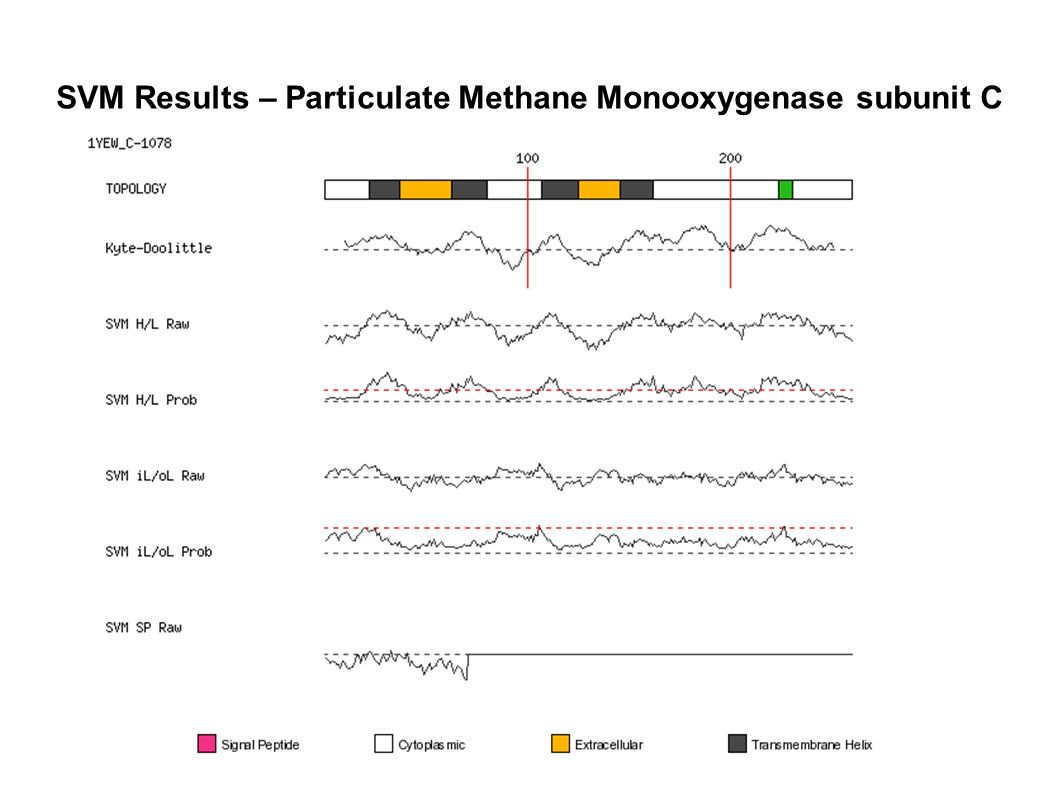 SVM Results – Particulate Methane Monooxygenase subunit C