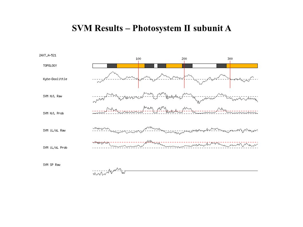 SVM Results – Photosystem II subunit A