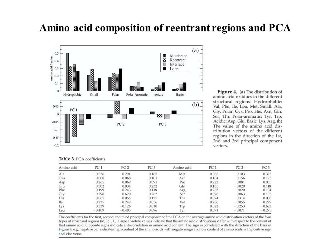 Amino acid composition of reentrant regions and PCA