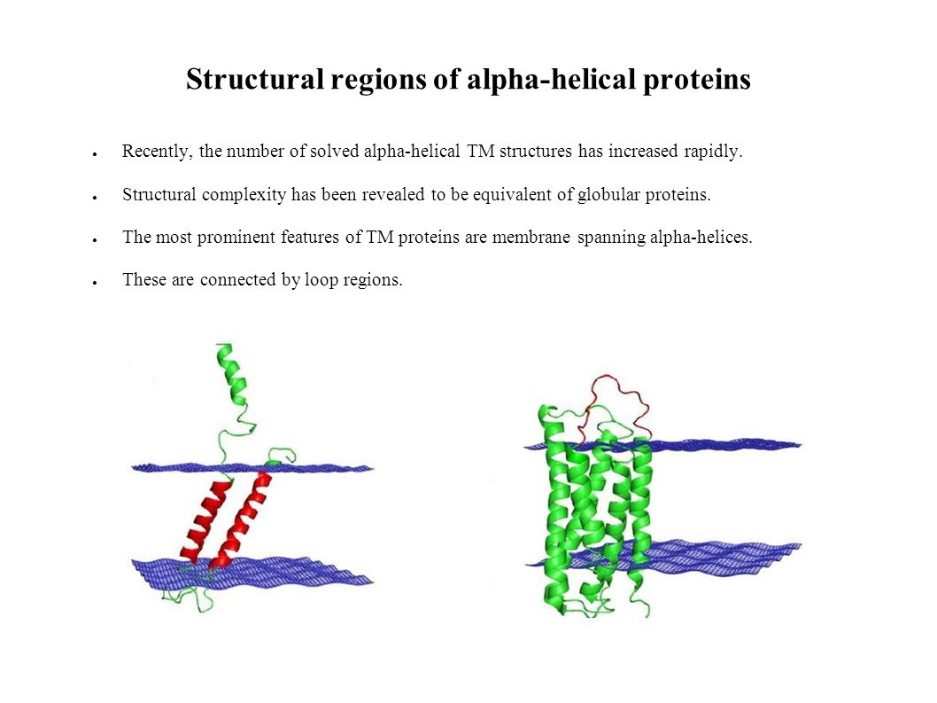 Structural regions of alpha-helical proteins Recently, the number of solved alpha-helical TM structures has increased rapidly.