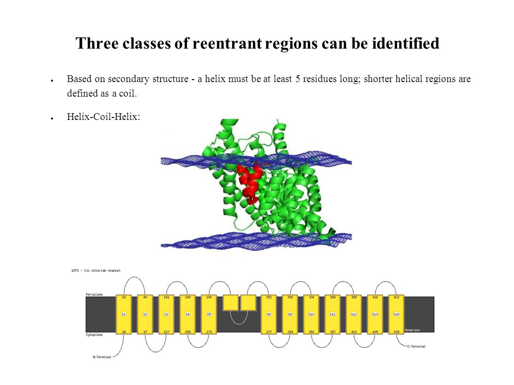 Three classes of reentrant regions can be identified Based on secondary structure - a helix must be at least 5 residues long; shorter helical regions are defined as a coil.
