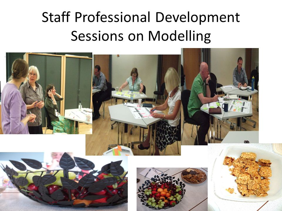 Staff Professional Development Sessions on Modelling