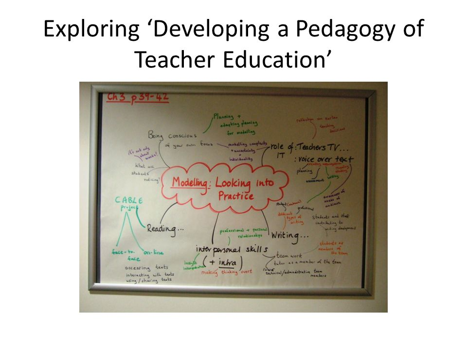Exploring Developing a Pedagogy of Teacher Education