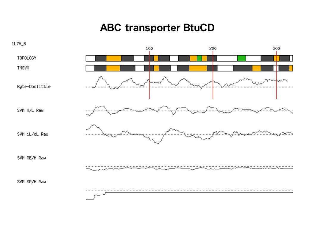 ABC transporter BtuCD