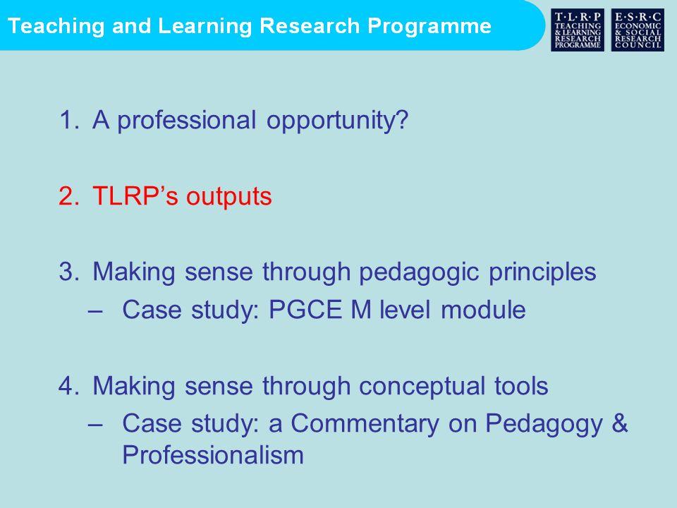 1.A professional opportunity? 2.TLRPs outputs 3.Making sense through pedagogic principles –Case study: PGCE M level module 4.Making sense through conc
