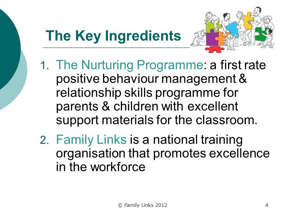 The Key Ingredients 1.