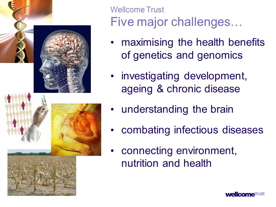 Wellcome Trust Five major challenges… maximising the health benefits of genetics and genomics investigating development, ageing & chronic disease unde