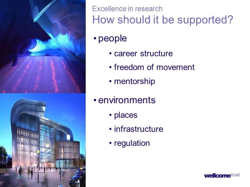 people career structure freedom of movement mentorship environments places infrastructure regulation Excellence in research How should it be supported