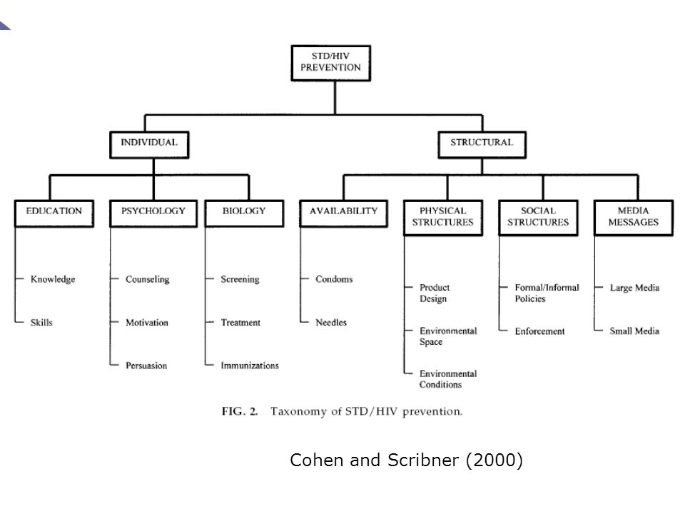 Cohen and Scribner (2000)