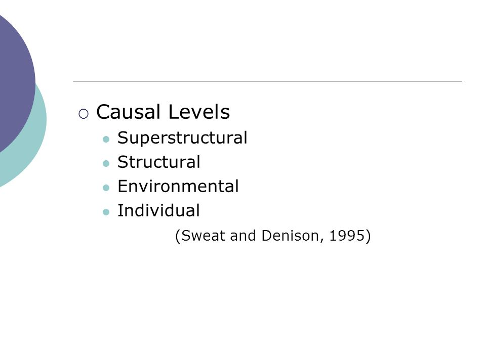 Causal Levels Superstructural Structural Environmental Individual (Sweat and Denison, 1995)