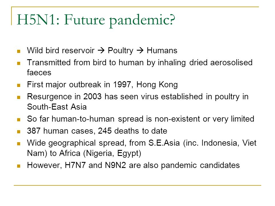 H5N1: Future pandemic? Wild bird reservoir Poultry Humans Transmitted from bird to human by inhaling dried aerosolised faeces First major outbreak in