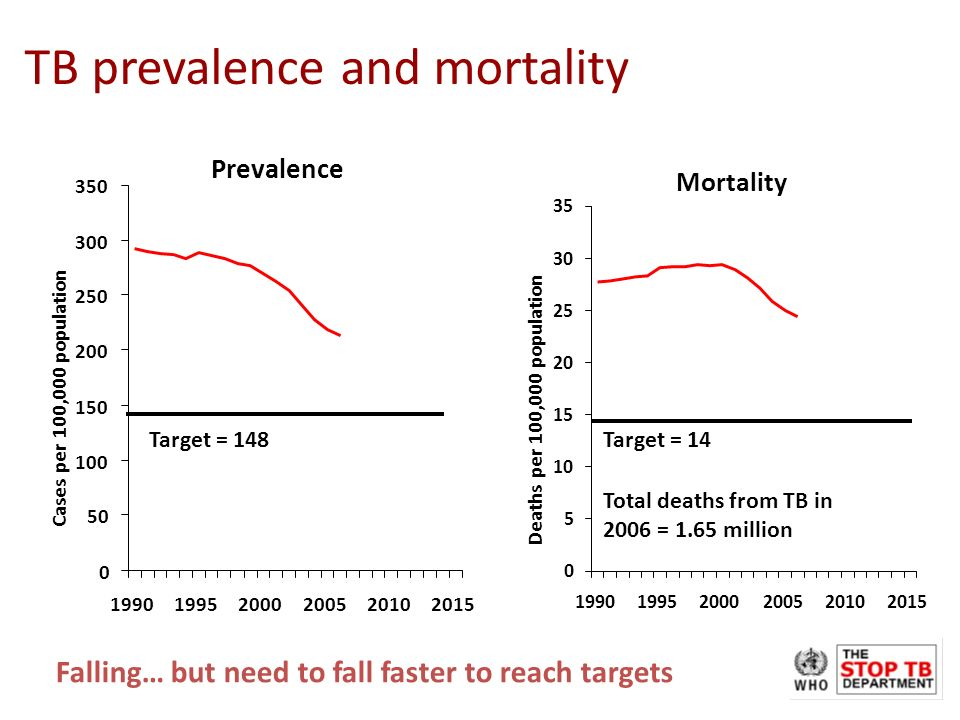 Mortality 0 5 10 15 20 25 30 35 199019952000200520102015 Deaths per 100,000 population Prevalence 0 50 100 150 200 250 300 350 199019952000200520102015 Cases per 100,000 population TB prevalence and mortality Falling… but need to fall faster to reach targets Total deaths from TB in 2006 = 1.65 million Target = 148Target = 14