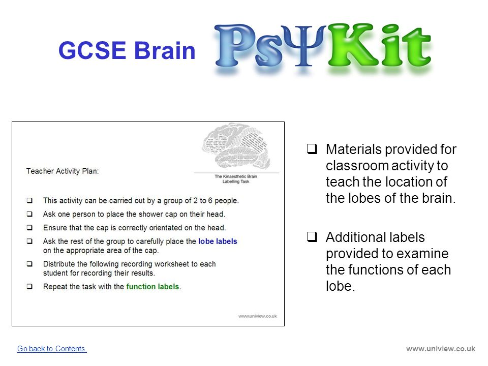 GCSE Brain GCSE Brain PsyKit Materials provided for classroom activity to teach the location of the lobes of the brain. Additional labels provided to
