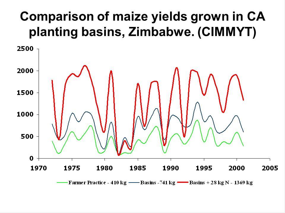 Comparison of maize yields grown in CA planting basins, Zimbabwe. (CIMMYT)