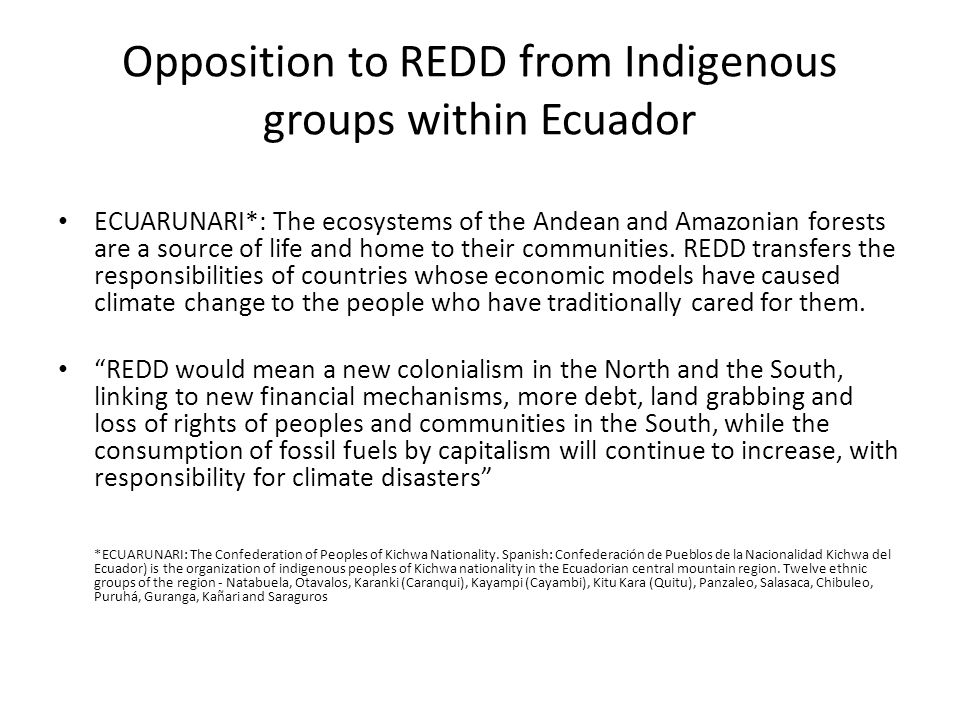 Opposition to REDD from Indigenous groups within Ecuador ECUARUNARI*: The ecosystems of the Andean and Amazonian forests are a source of life and home to their communities.