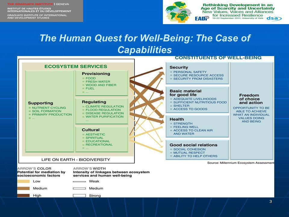 3 The Human Quest for Well-Being: The Case of Capabilities