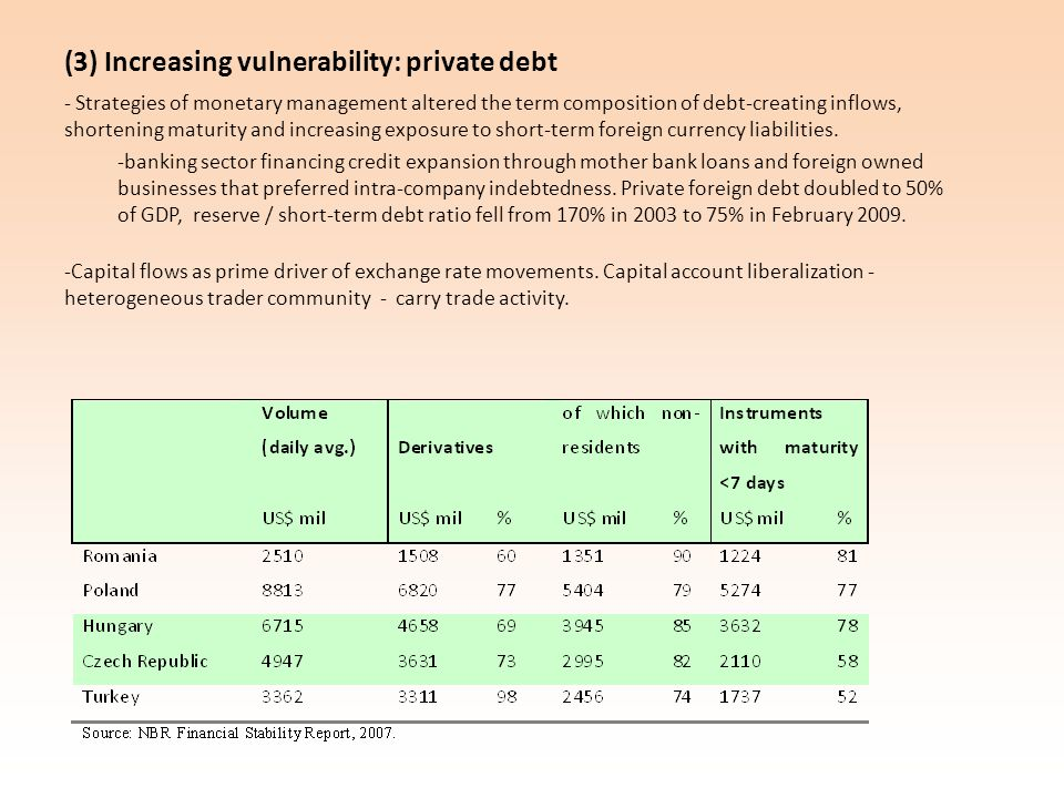 (3) Increasing vulnerability: private debt - Strategies of monetary management altered the term composition of debt-creating inflows, shortening maturity and increasing exposure to short-term foreign currency liabilities.